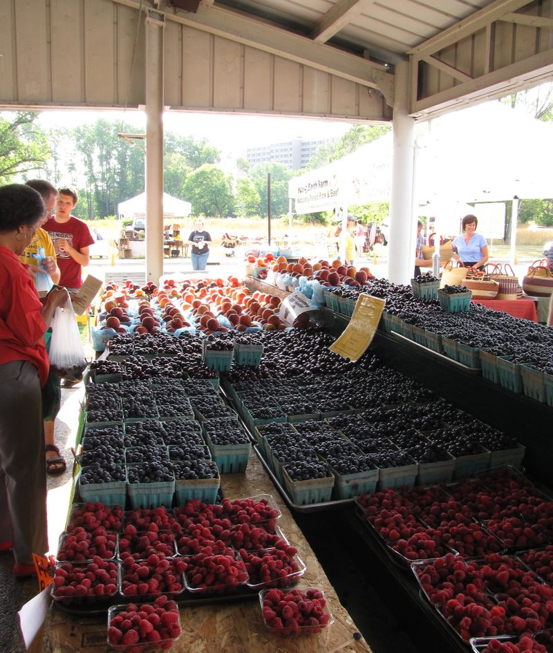 Farmers Market July 25 2009 013