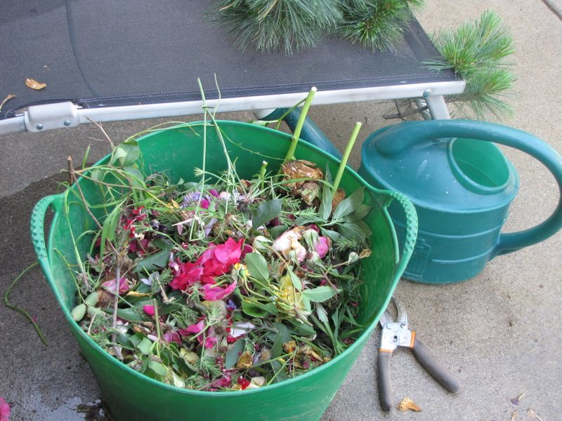 Garden Yuck and Deadheading 062409 011