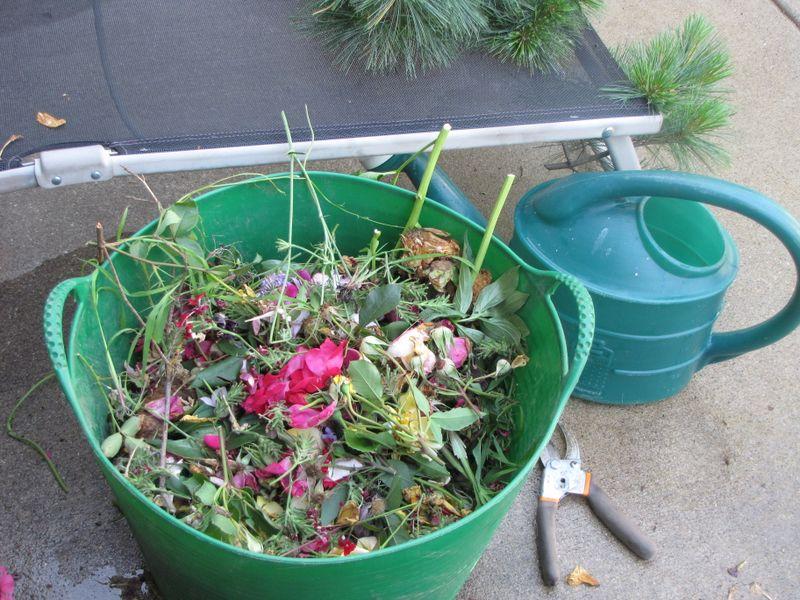 Garden Yuck and Deadheading 062409 011