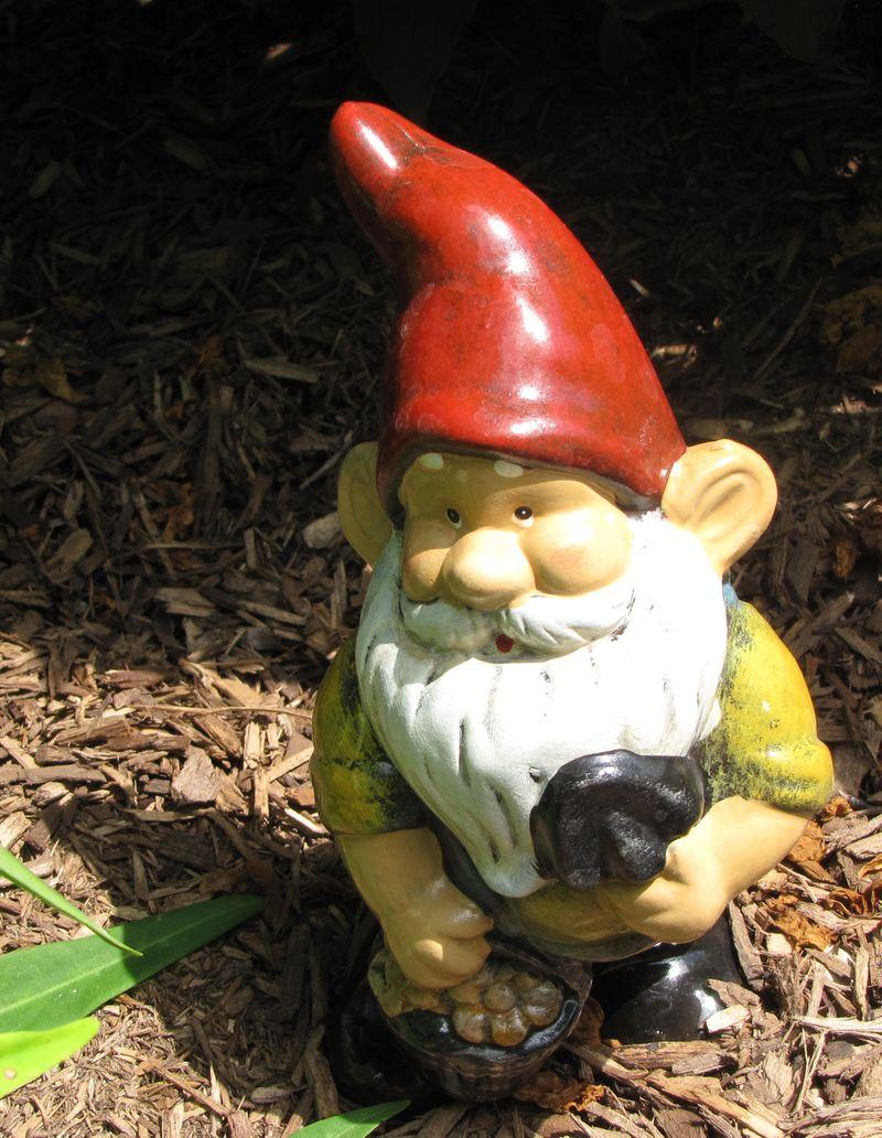Gnomes Etc 002