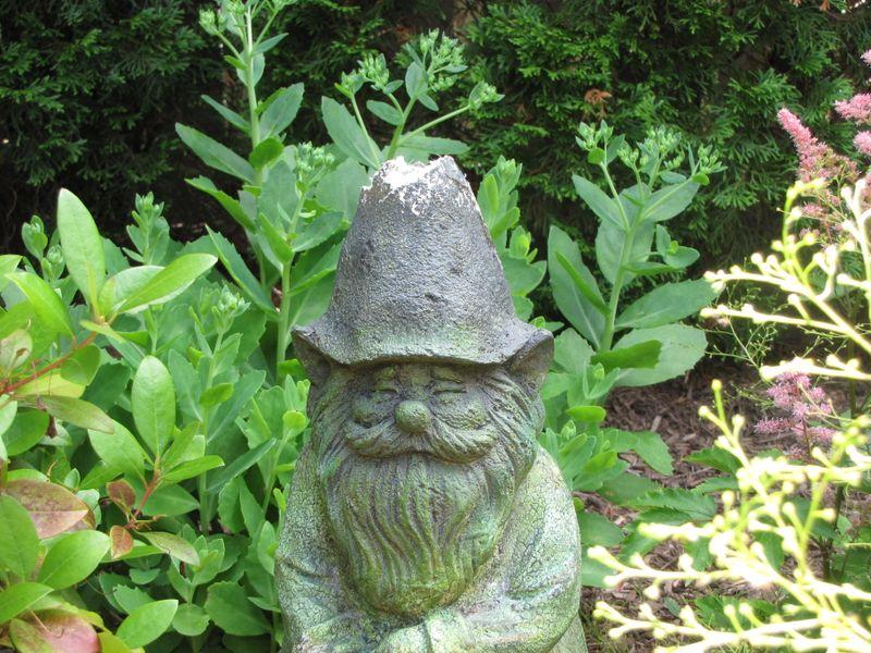Gnomes Etc 004