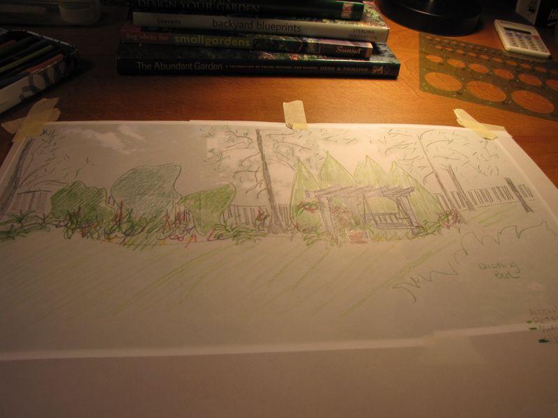 Garden design process back bed 002