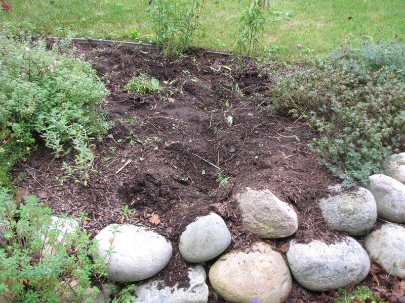 Fall gardening 092609 002