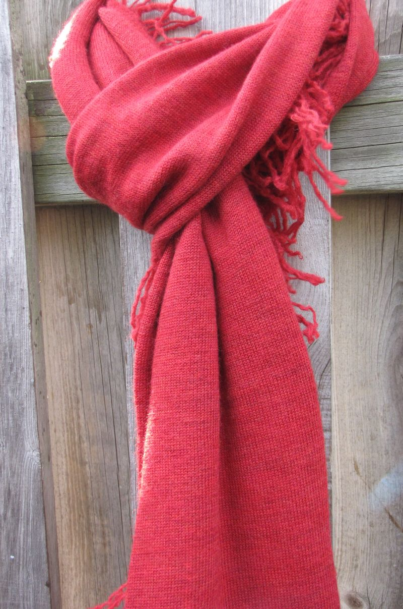 Red scarves 005