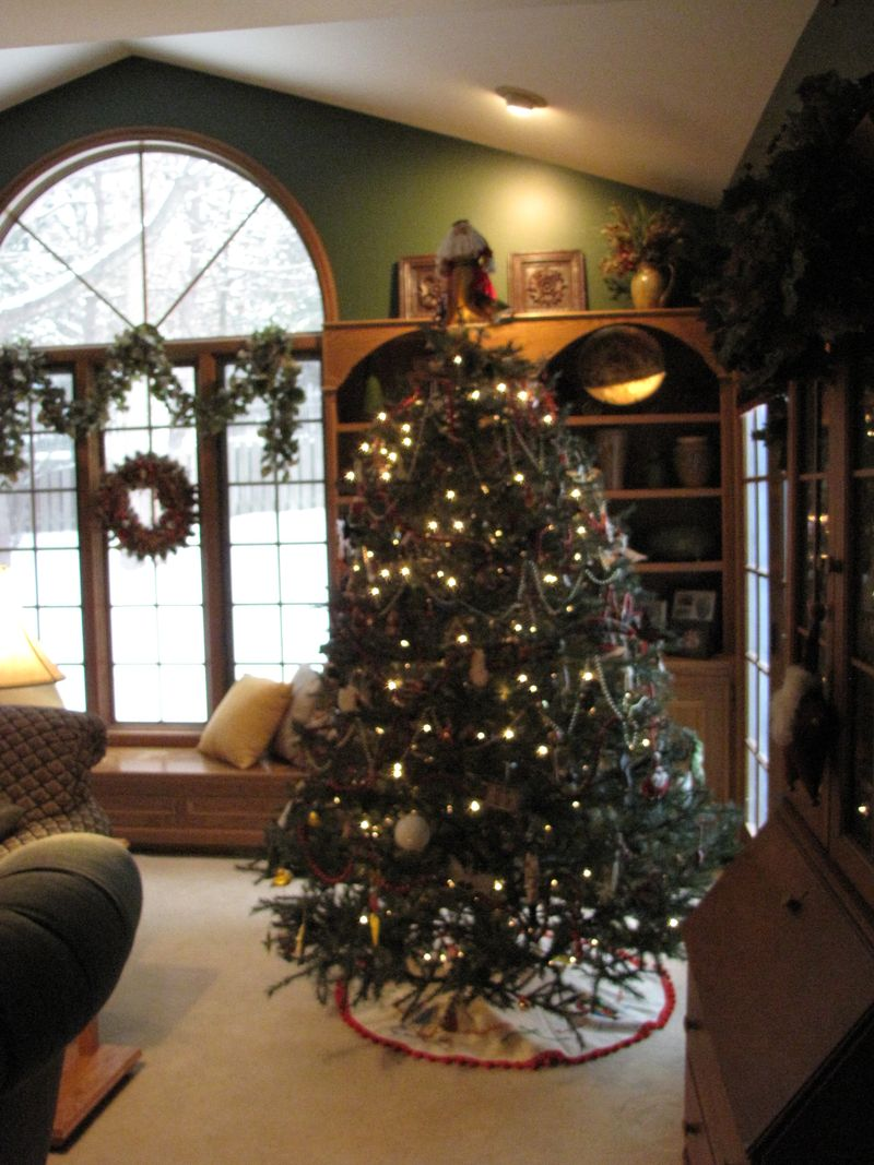 Tree and decor 012