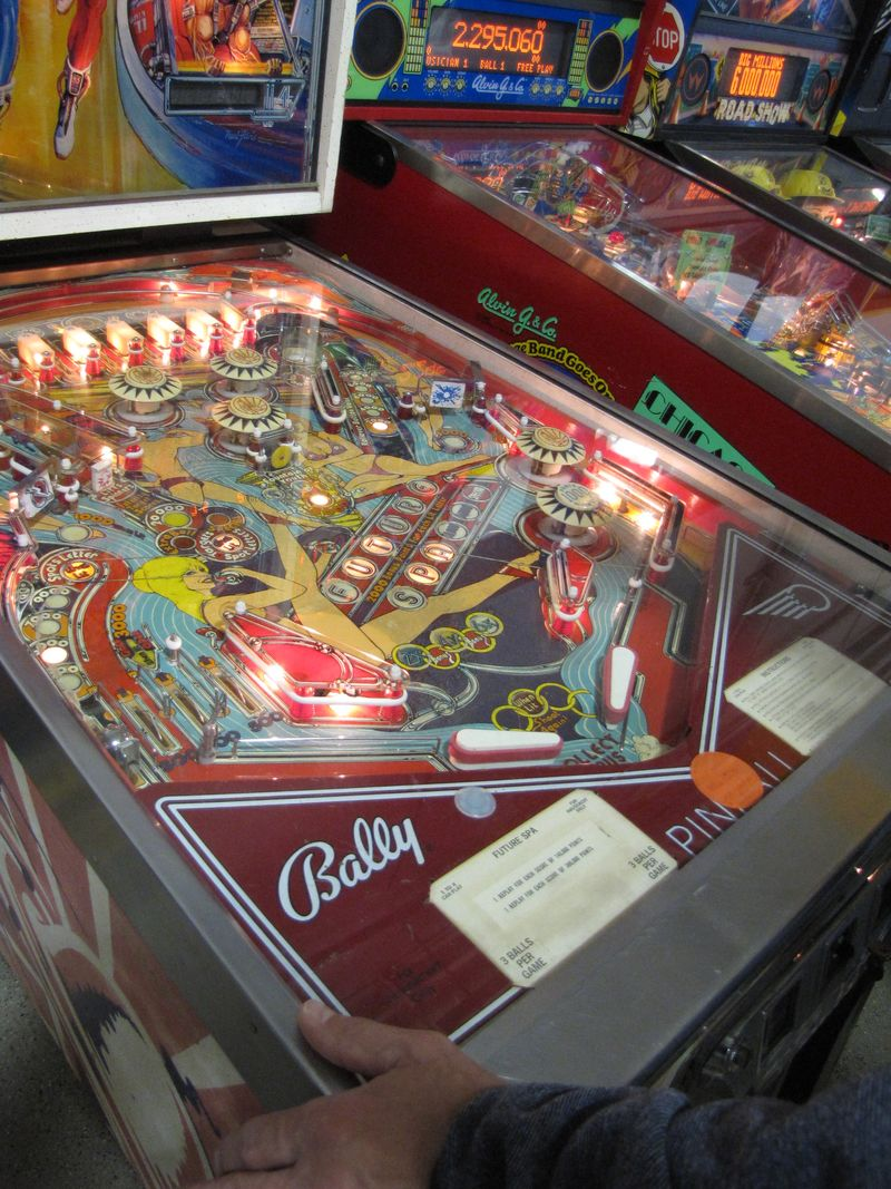 Pinball at the zoo 027