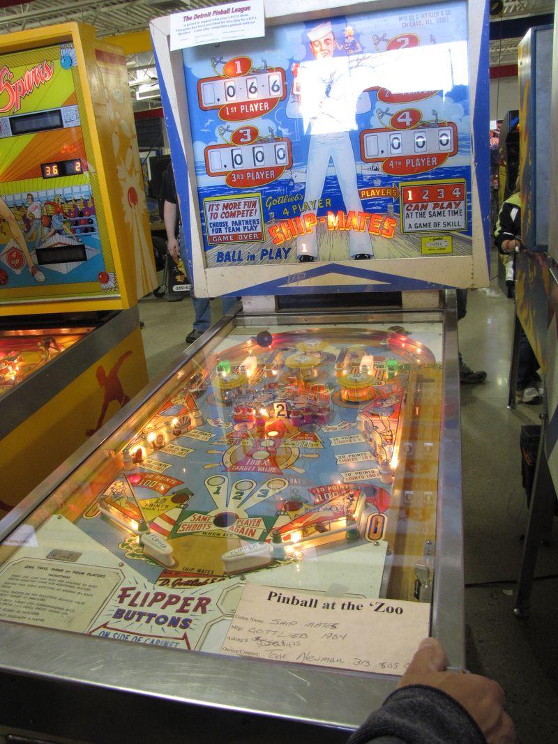 Pinball at the zoo 008