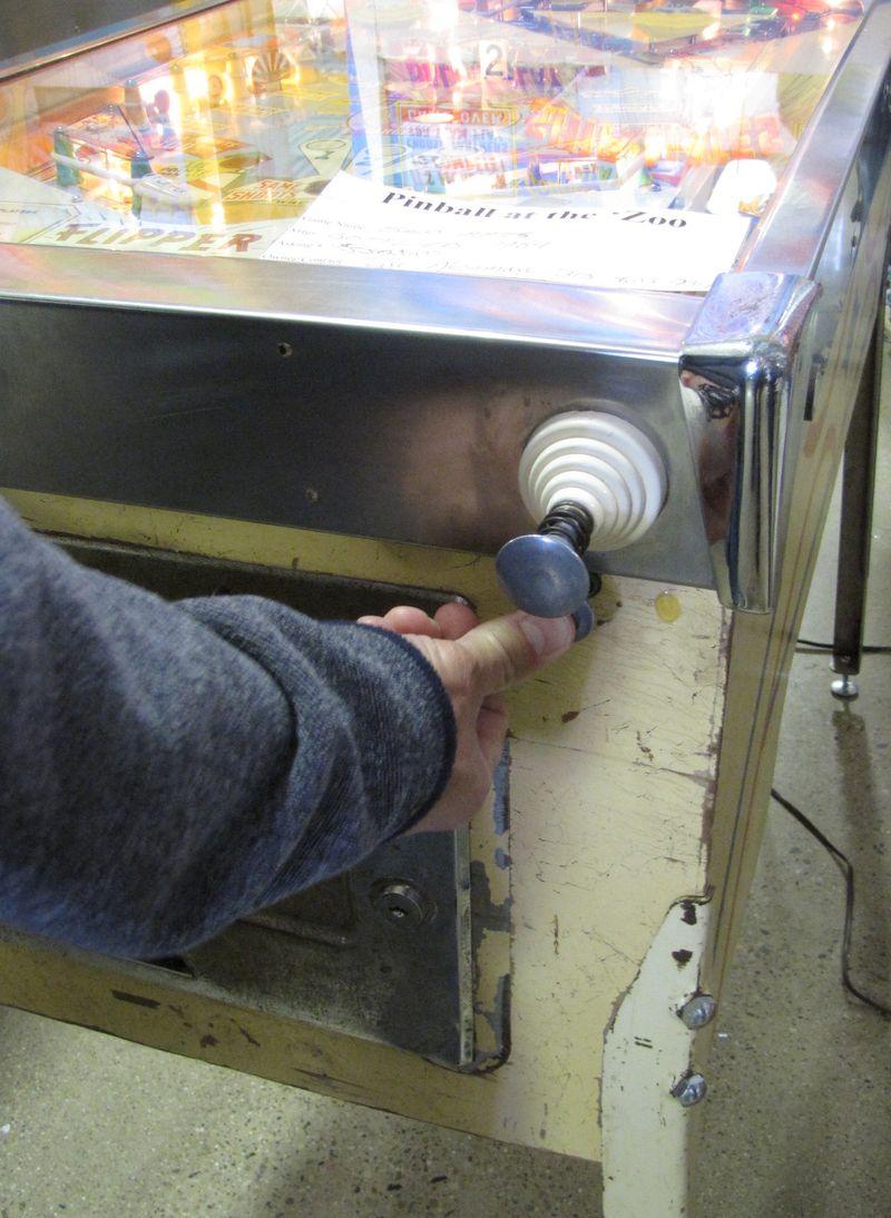Pinball at the zoo 010