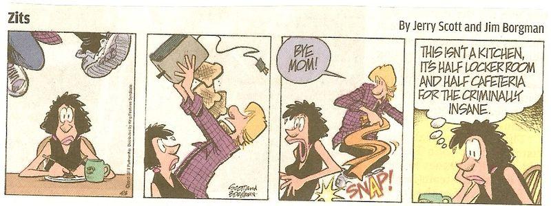 Zits comic
