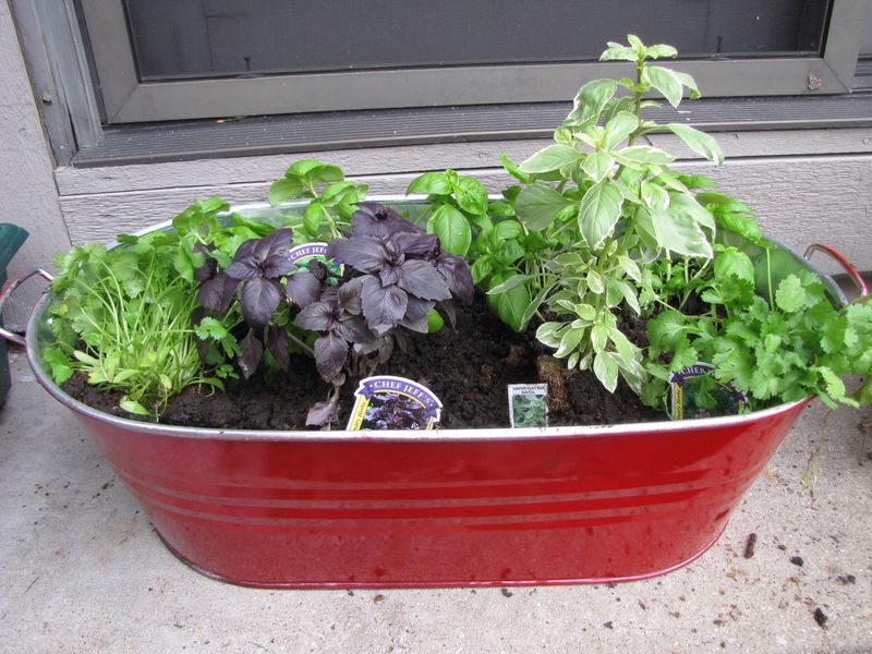 Planting day may 15 008