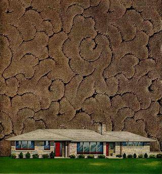 1954-wilton-carpet-cropped