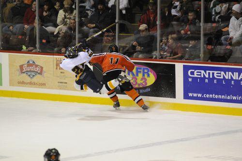 20082009 hockey season