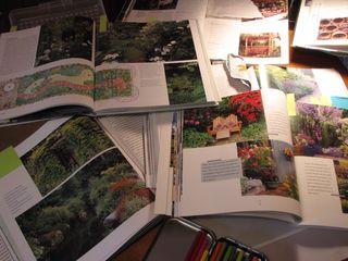 Garden design process back bed 006