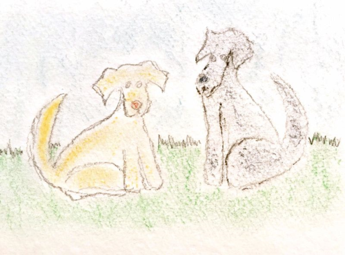 J-pups pencil and pastel jan 2015 - Jan 20, 2015, 9-58 AM