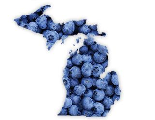 Hl-michigan-blueberries-april-2013_BODY00